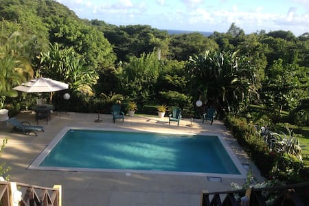 Stunning seaview apartment - Tobago (Trinidad & Tobago