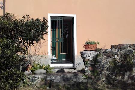 Casa tra gli ulivi - Bonassola