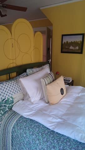 Cozy suite in a Historic Home - Pine Bluff - Casa