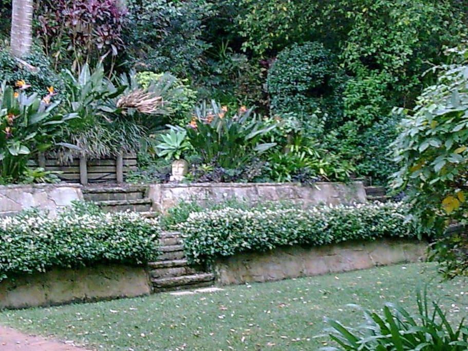 lush garden adjoins private rain forest