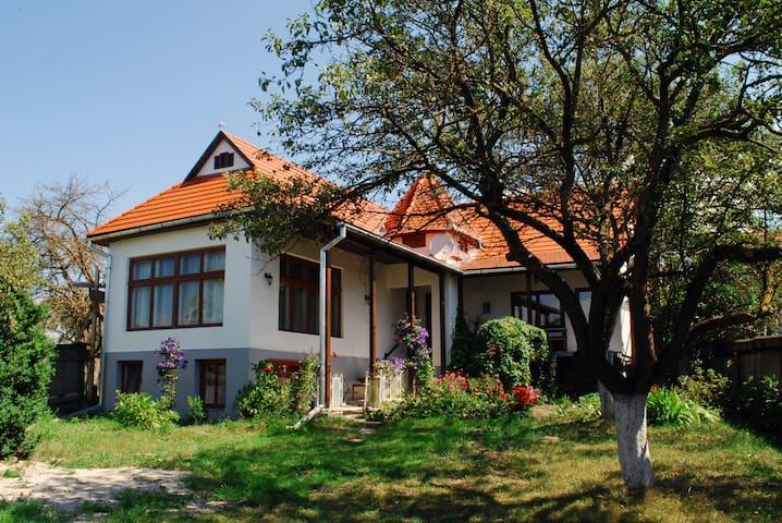 Transylvania Guest House - Bârzava - House