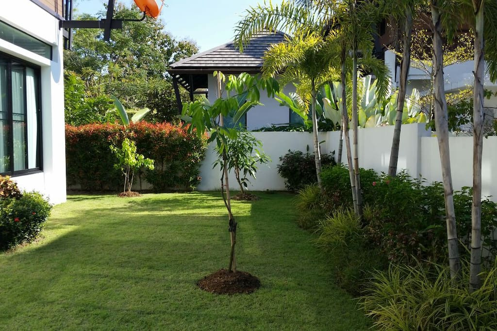 Our little lawn with some tropical fruit. We provide fruit basket upon arrival.
