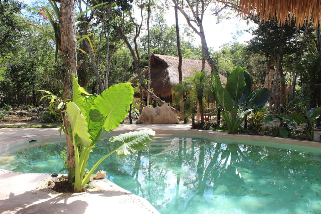 our cenote-like  pool