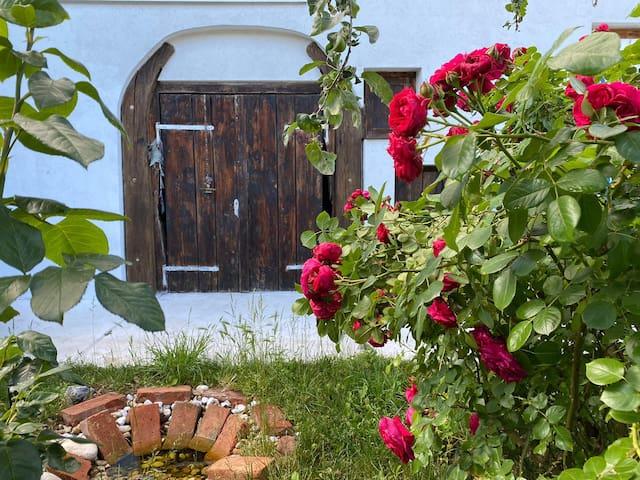 Entspannung & Inspiration im Brandnerhof