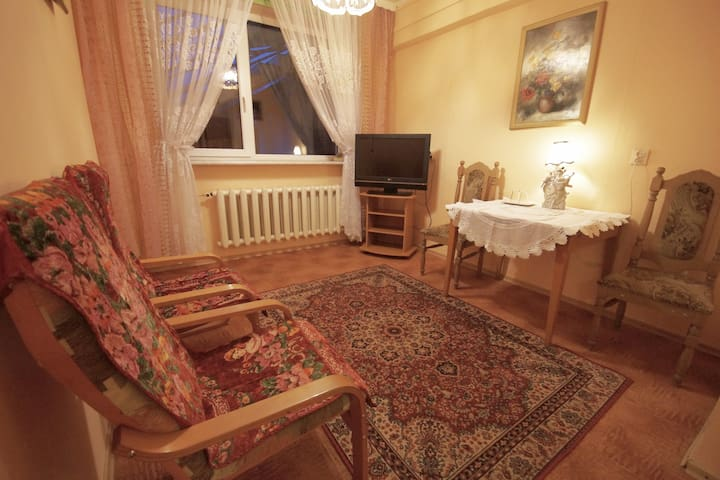 Classic apartment near Warsaw 2 - Wołomin - Daire