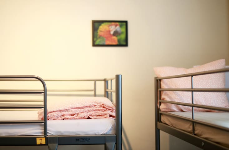 6 People Private Room - The Orange Hostel