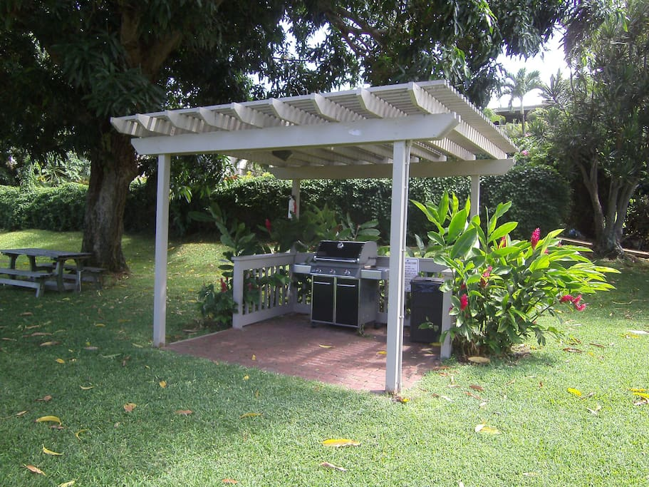 50 steps from your lanai, is this BBQ. Advice on how to get fresh fish at wholesale rates is included.