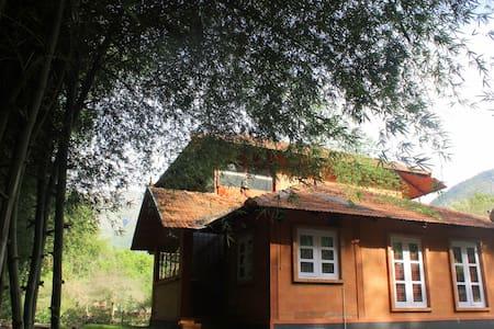 Artistic Kerala style house - Masinagudi