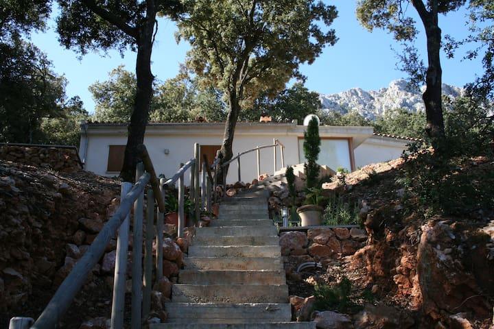 Sa Talaia - Escorca - Haus