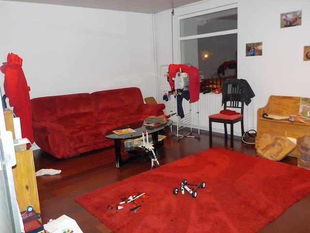 Chambre au calme à MASSY, proche MASSY-TGV