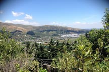View out to the Port Hills