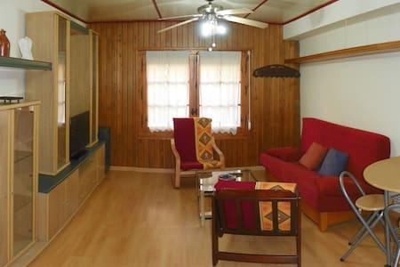 Apartamento acogedor en Jaca - Jaca - Byt