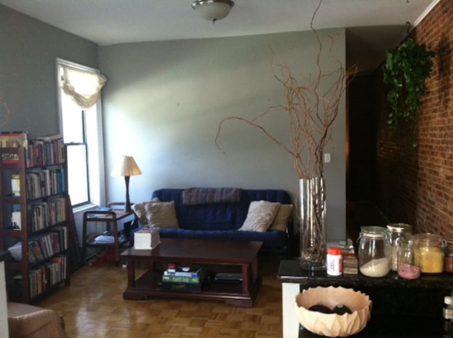 Sunny Brick wall living Room