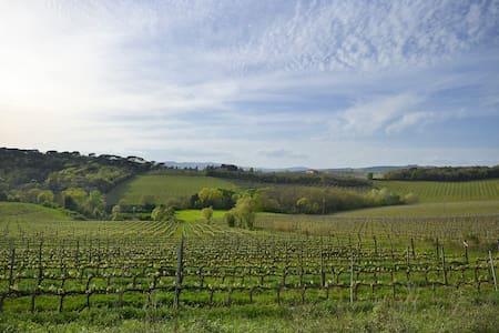 L'Asinello Holiday Home - Castelnuovo Berardenga