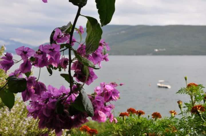 Waterfront Villa in Herceg Novi