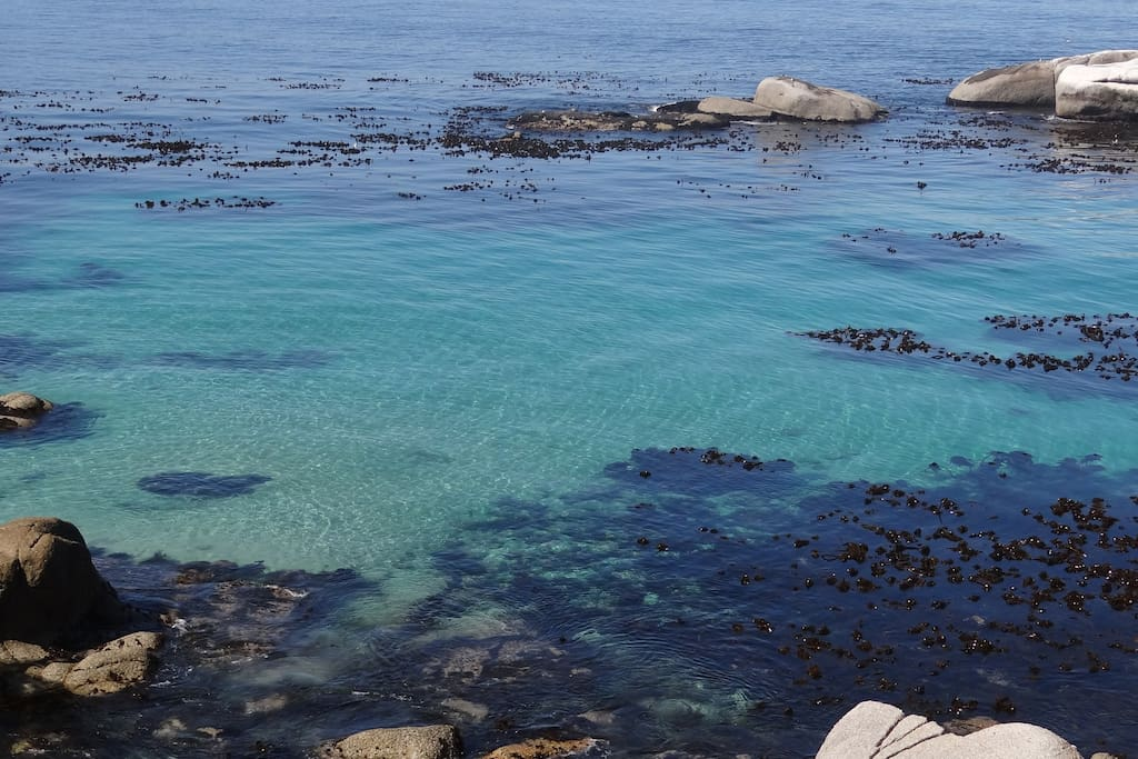 Crystal clear water right in front of the house on a beautiful windless summer day.