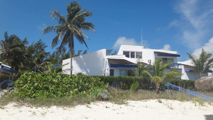 View of villa from the beach. That palm tree is on our deck.