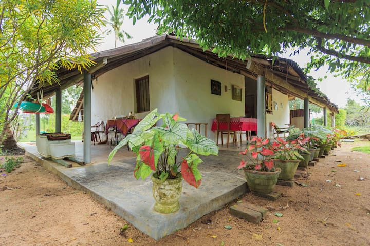 Elmo's Home - Puttalam - Casa