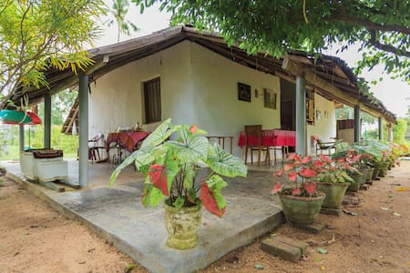 Elmo's Home - Puttalam