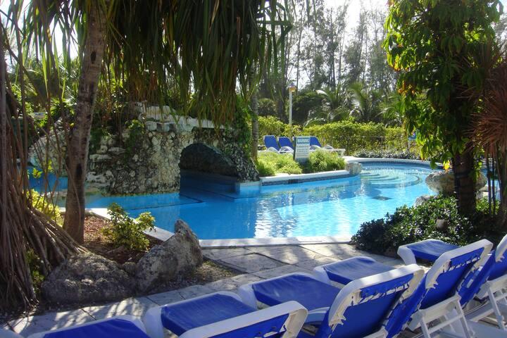 Sunrise Beach Club Deluxe Unit #108 - Paradise Island - Apartment