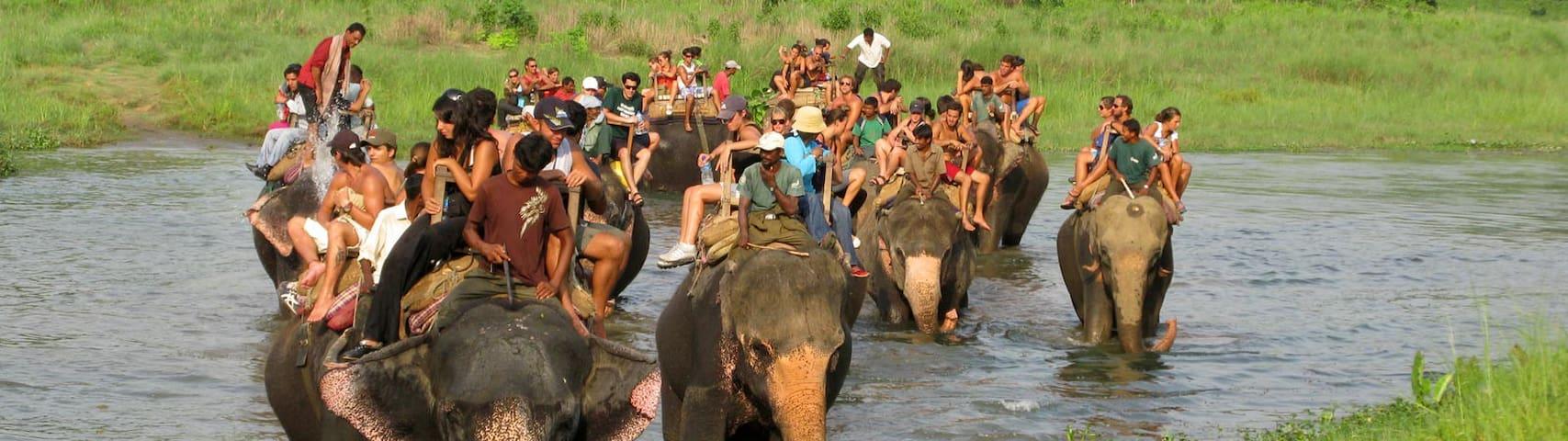 Chitwan Jungle Safari Attach Room
