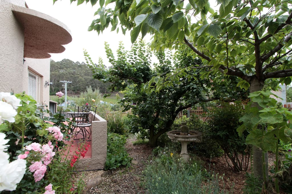 This is the garden at the front of the house its a nice place to sit and enjoy a cup of tea or coffee
