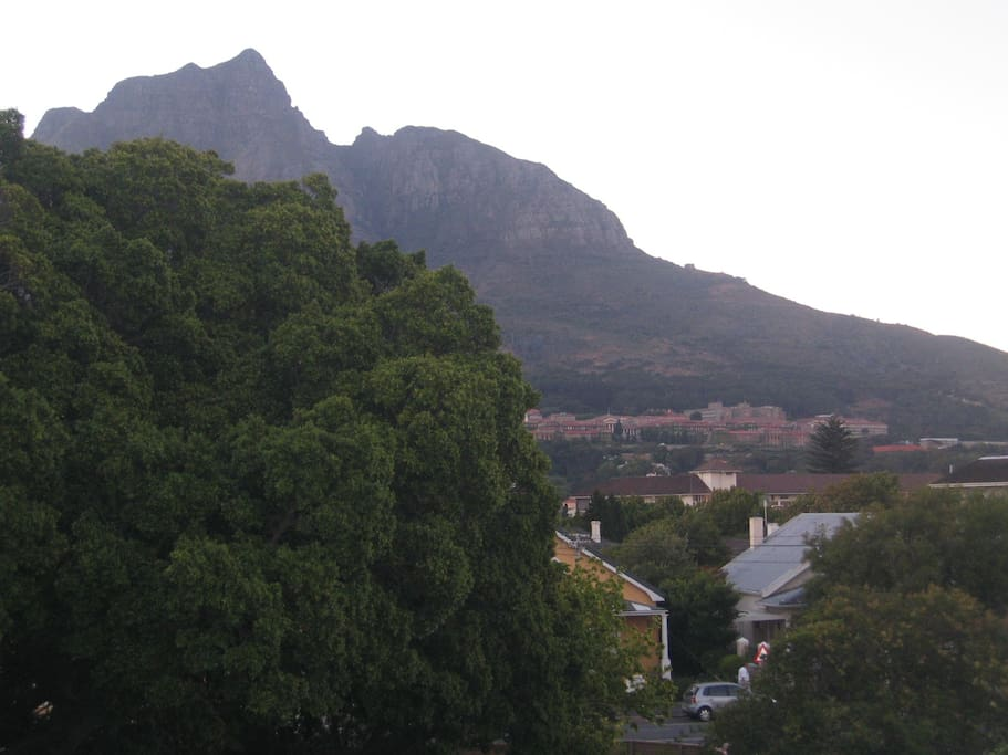 View from the front door of the apartment- The University of Cape Town are the large buildings on the mountain side.