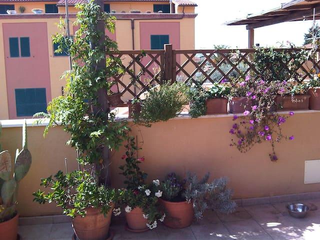 Capalbio  - Capalbio Tuscany - Capalbio Scalo - Huis
