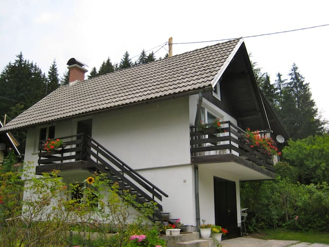 One Bedroom Apartment  in Jezersko