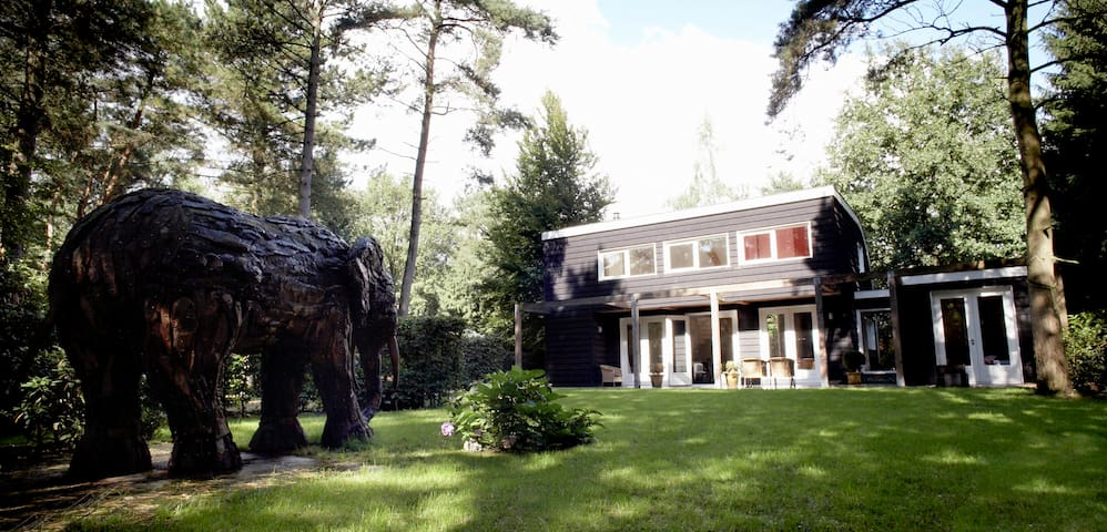 Forest house 'The Helping Elephant'