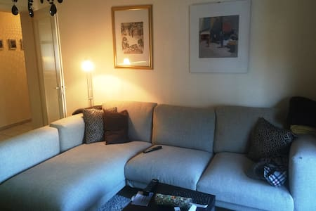 Cosy 3-room apartm. 20 min. from Basel (train/car) - Sissach - Daire