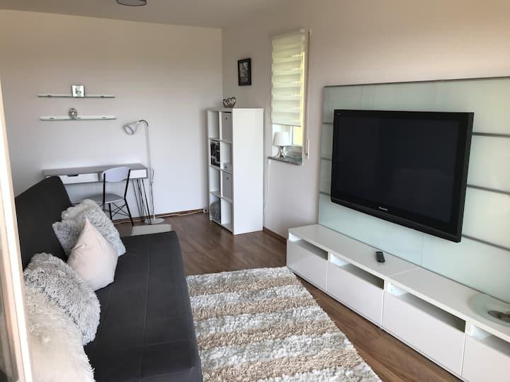 Schönes Apartment / Wohnung Urlaub in Sachsen