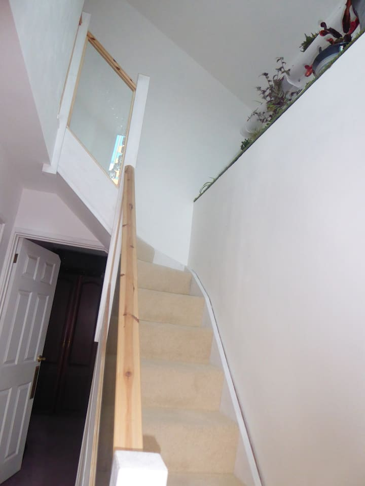 View up the stairs with Living Wall Herb Garden on the right
