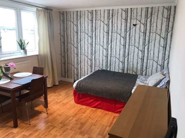 Large double room in central London with breakfast