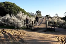 Cycling is especially lovely in the cooler months here along the dedicated tracks.
