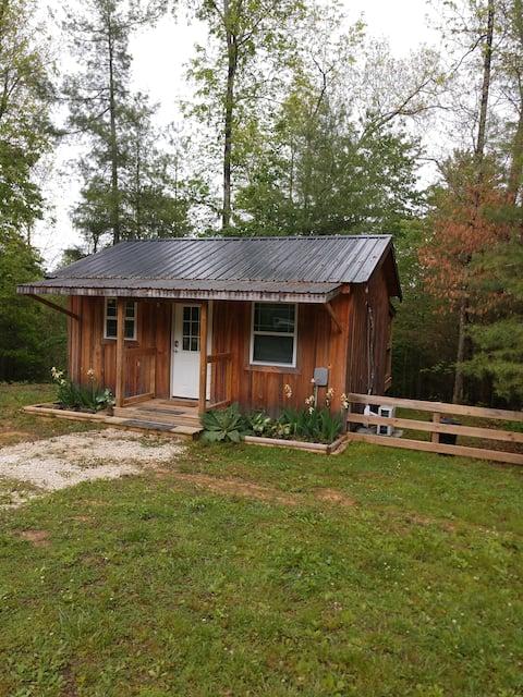 Moonlit Cabin