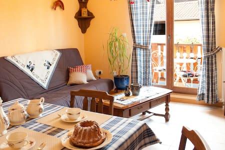 Gite tout confort classé 3*** près de Strasbourg - Wasselonne - Wohnung