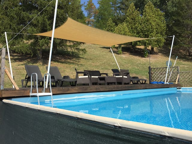 The palms oasis near Bologna with swimming pool