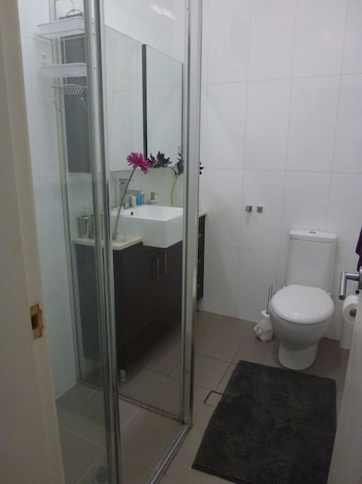 Bathroom with shower, sink, loo, towels and hair dryer