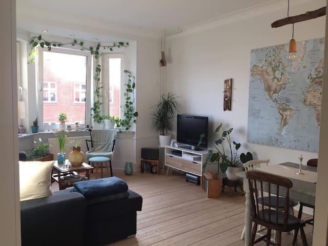 Lys 2 værelses lejlighed tæt på Aalborg centrum