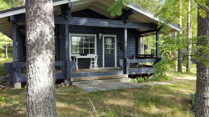 Peninsula cottage next to lake Saajuu