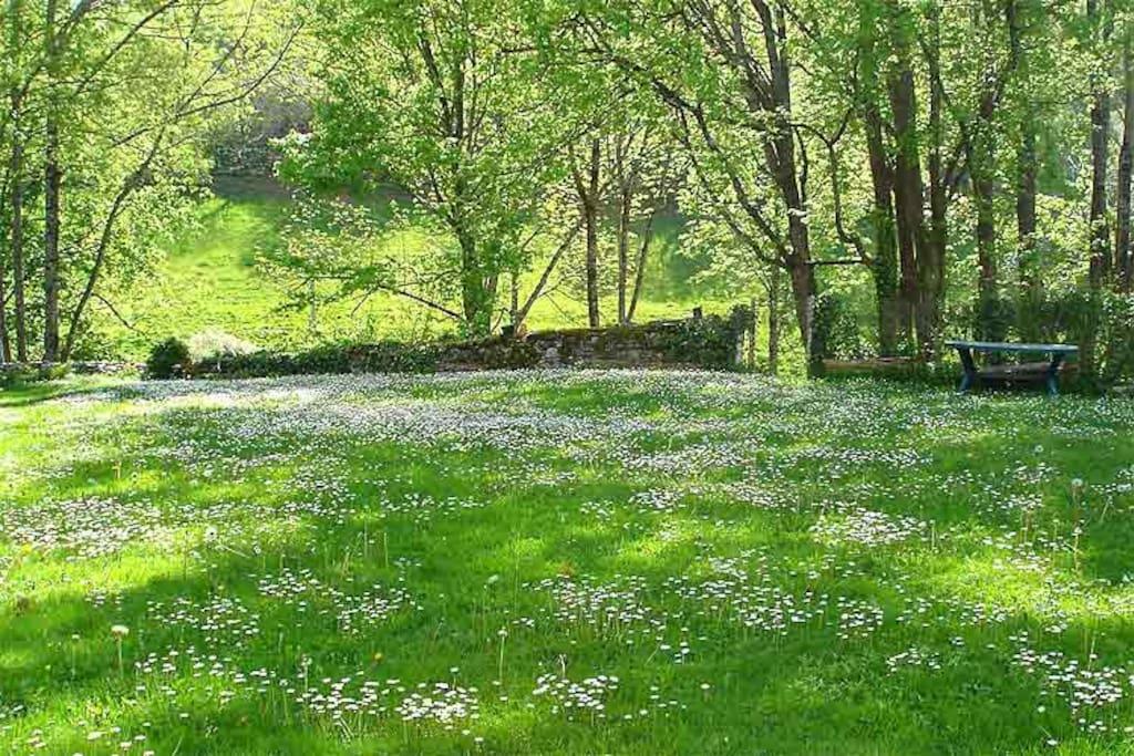 La cour au printemps, vue depuis le poulailler.
