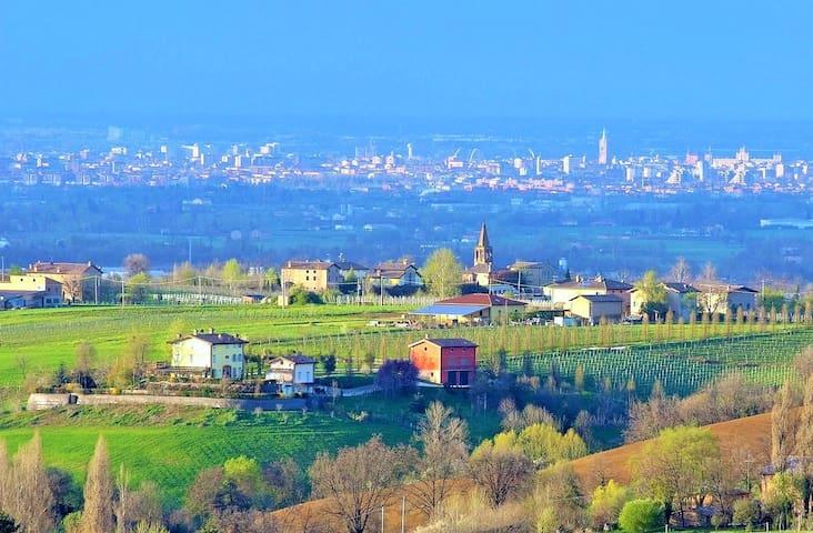 veduta della Vedetta con sfondo della citta di Modena