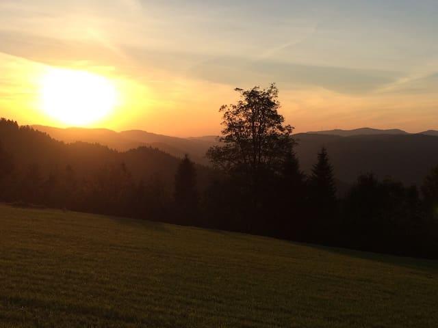 Heimelige Wohnung im Herzen des Schwarzwalds