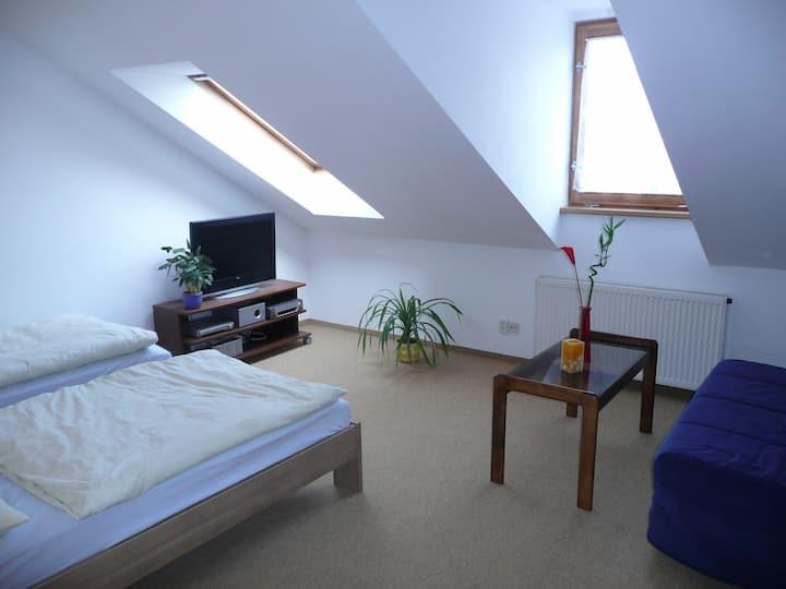 attic studio Vrsovice, secure parking free