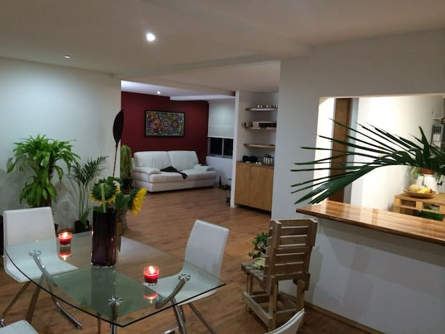 Beautiful, Big apartment, Narvarte
