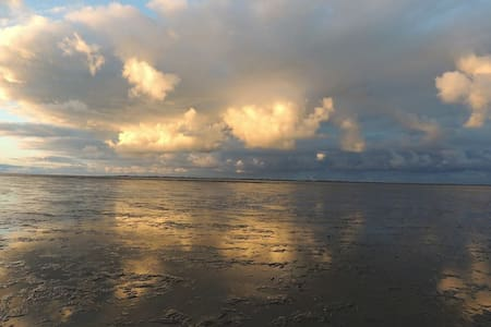 Weltnaturerbe Wattenmeer - Dornum