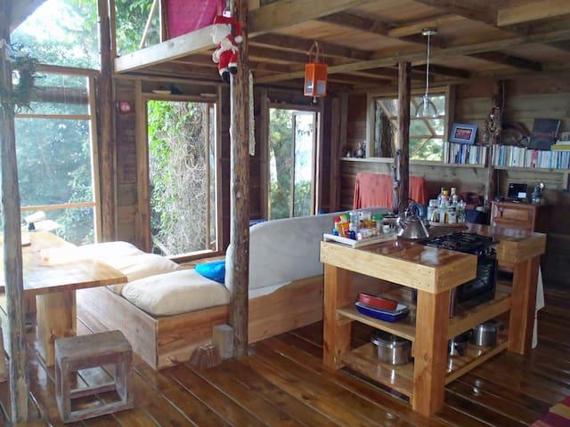 L'Auberge Polynesienne ( 3ptiscochons ) - Tevaitoa - Casa na árvore