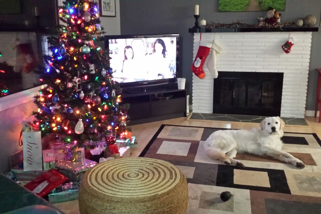 Our family room with Cracker the dog and television.