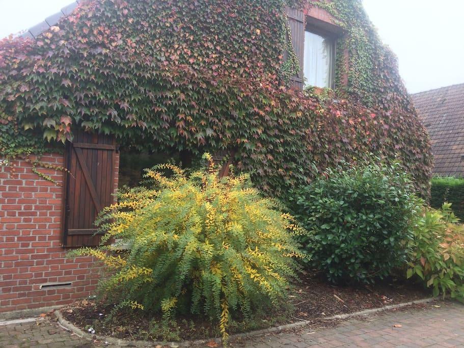 La beauté de l'autumn dans le jardin devant le meublé Pas de vis à vis Vous rentre dans votre logement sur le côté gauche